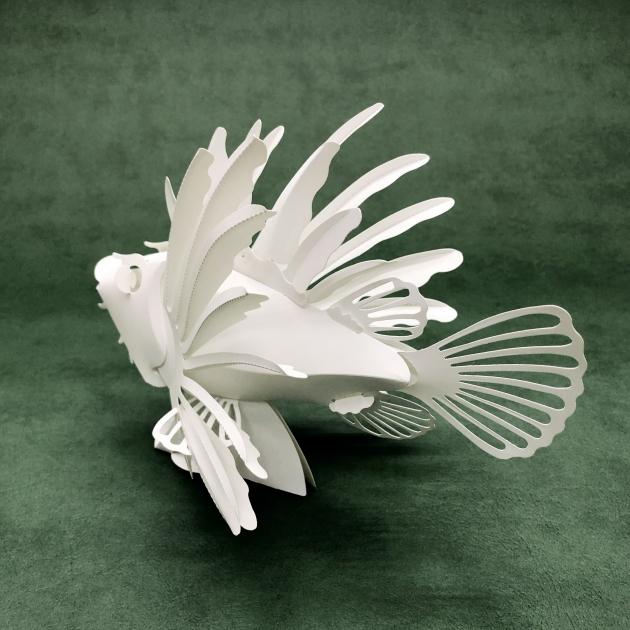 獅子魚 2