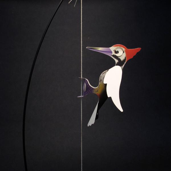 啄木鳥 1