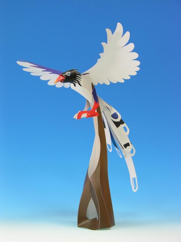 台灣藍鵲 2