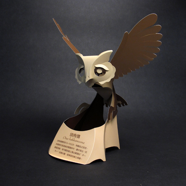 領角鴞 1
