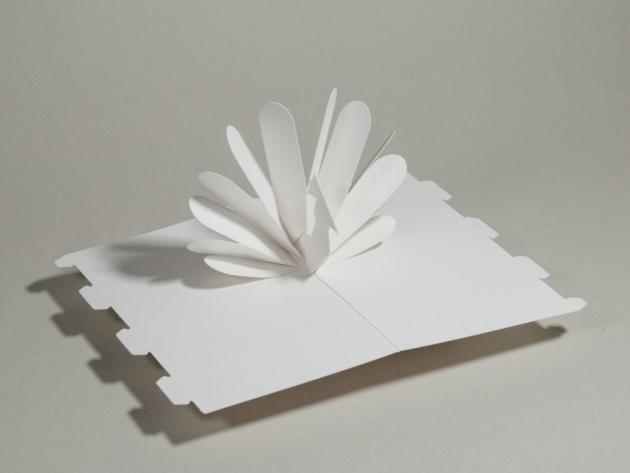 立體書創作百頁卡/The Pop-Up BaseCard Package 5